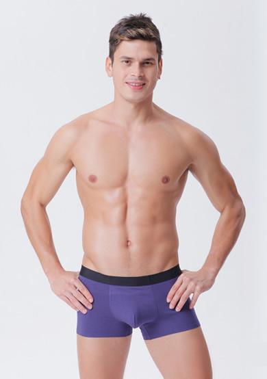 商务型超柔无痕简约平角男裤